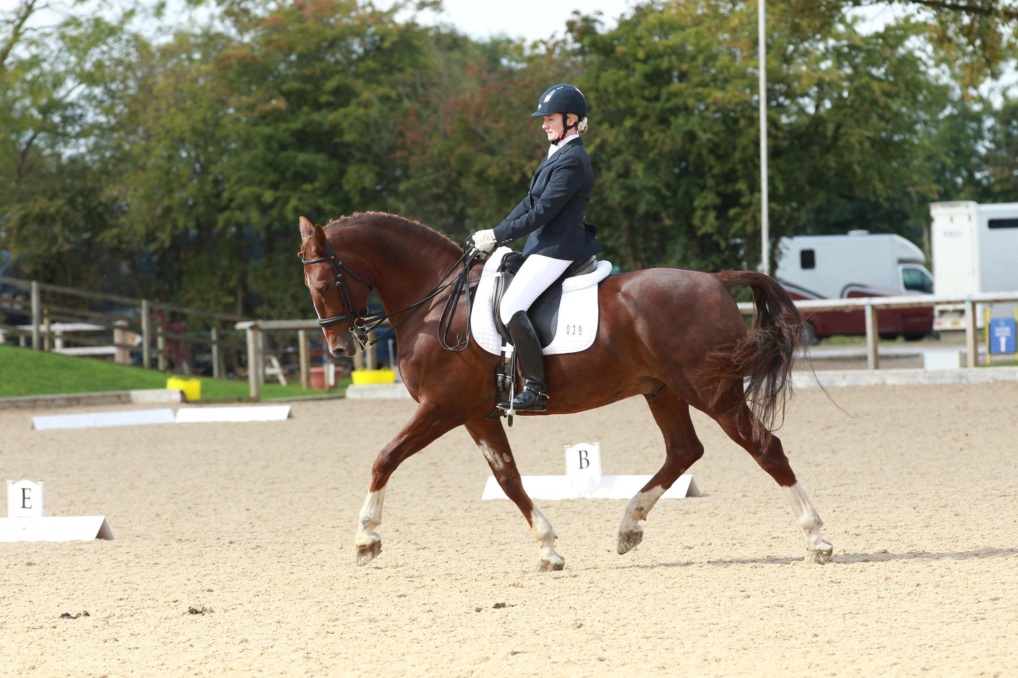 Swindon Dressage - Rose on Zorro